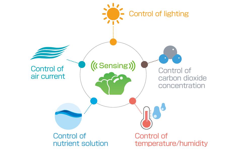 Environment clipart environmental condition. Plant factory horiba by