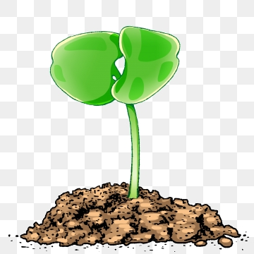 Plants protect nature . Crops clipart underground