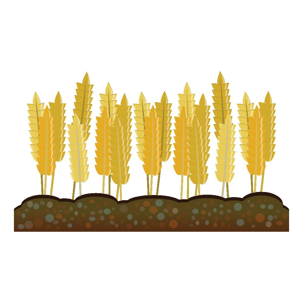 Wheat clipart wheat crop. Clipartist net clip art