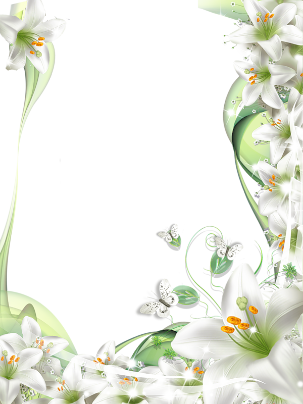 Transparent png photo frame. Cross clipart lily
