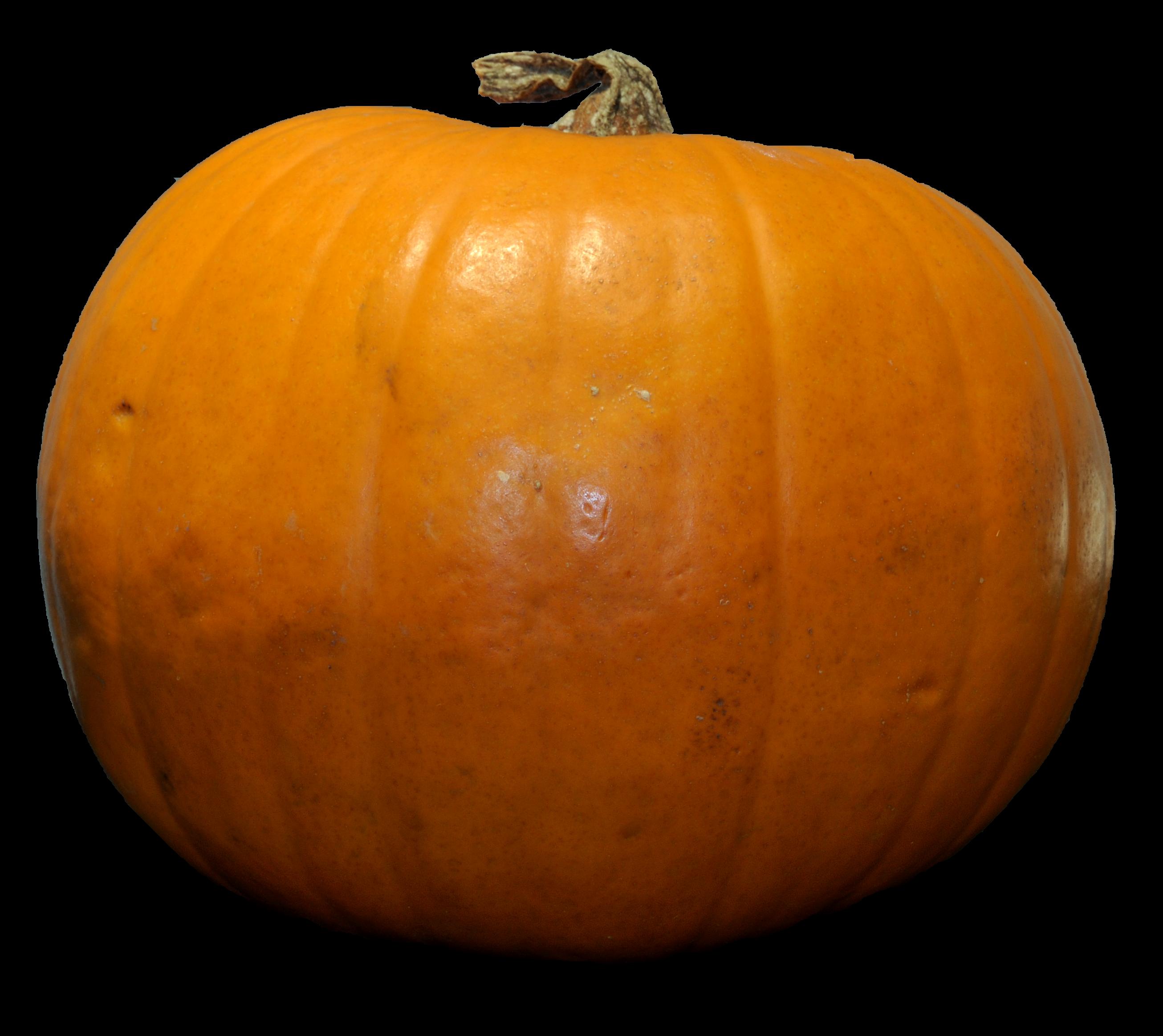Cross clipart pumpkin. Png images free download