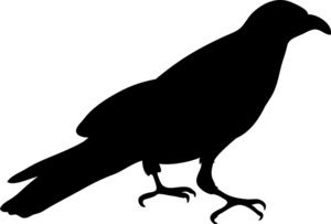 Crow clipart. Image silhouette of a