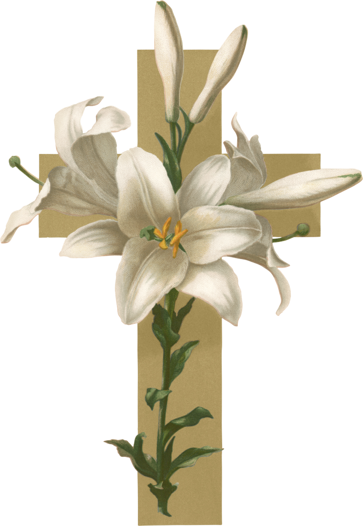 Funeral clipart coffin funeral. Easter lily christian cross
