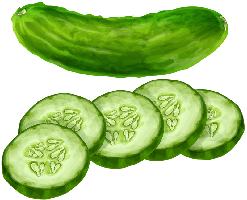 png pinterest food. Cucumber clipart