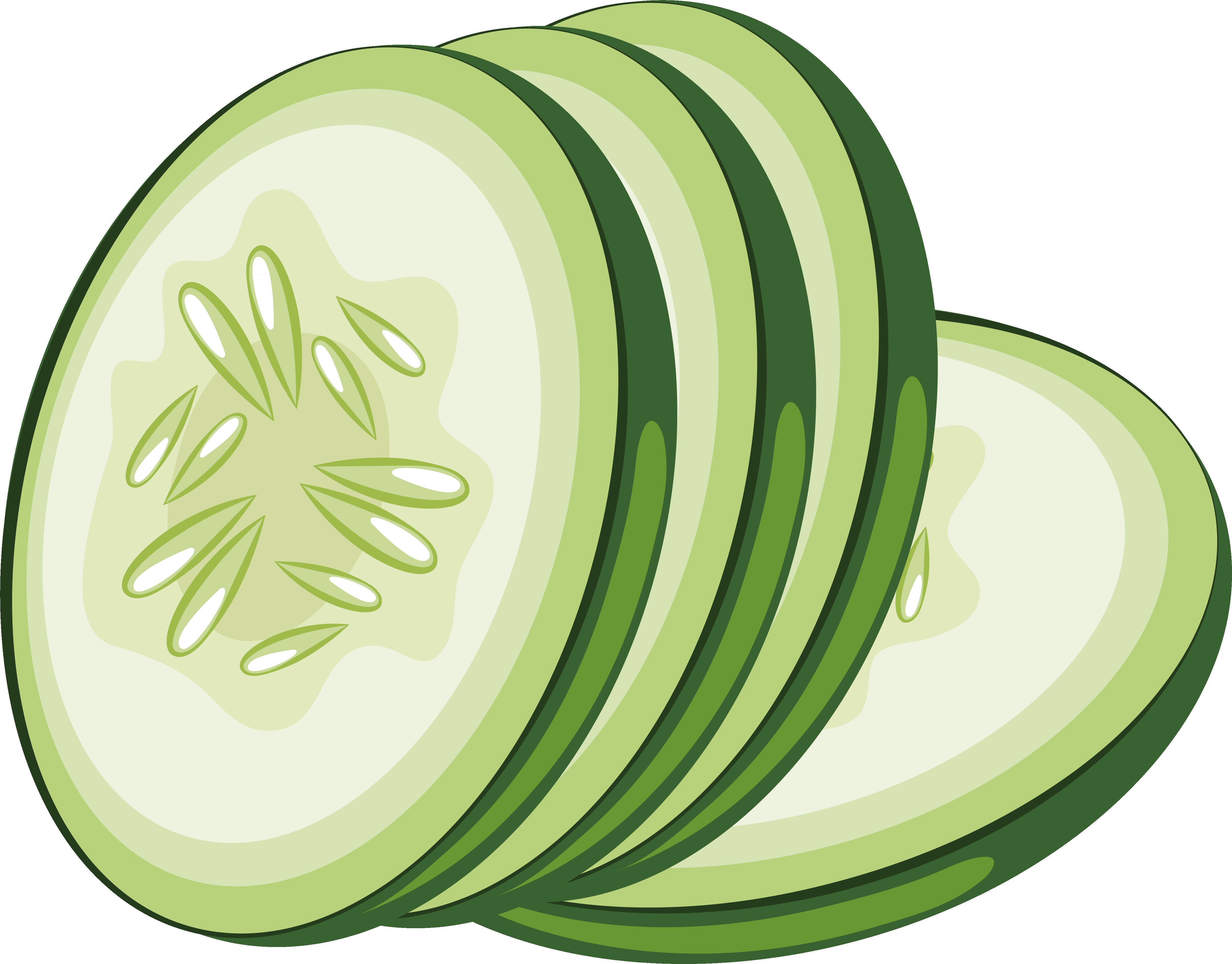 Lime clipart cucumber slice. Vegetable icon design transprent