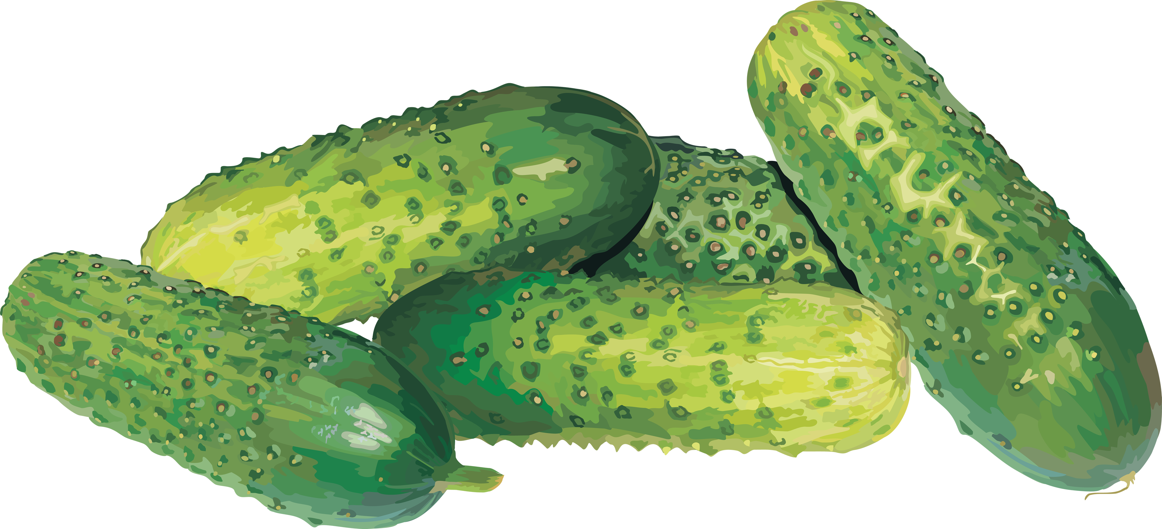 Twenty seven isolated stock. Vegetables clipart cucumber