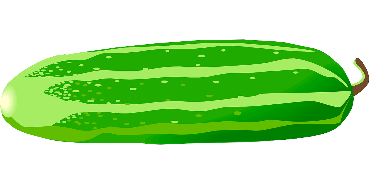 Free download best on. Zucchini clipart cartoon