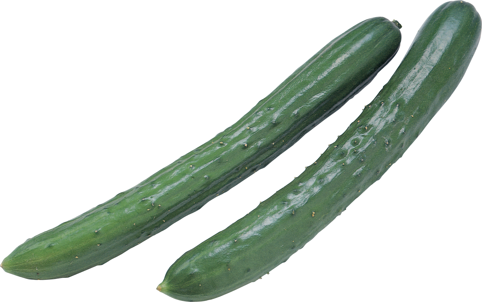 Zucchini clipart vegetable. Cucumber png images free
