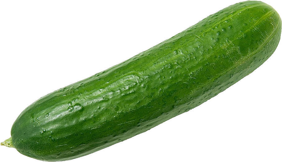 Zucchini clipart small. Cucumber png images transparent