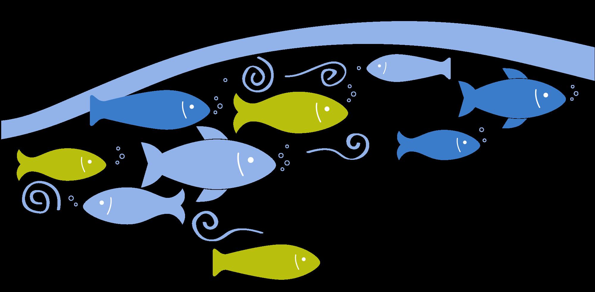 Evidence clipart report. Exploring downstream iriss fish