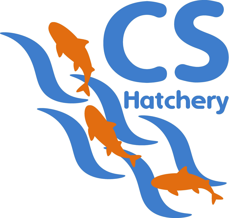 Cs professionals hatchery hu. Curriculum clipart general knowledge