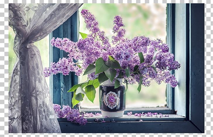 Curtain flower lilac png. Curtains clipart window sill