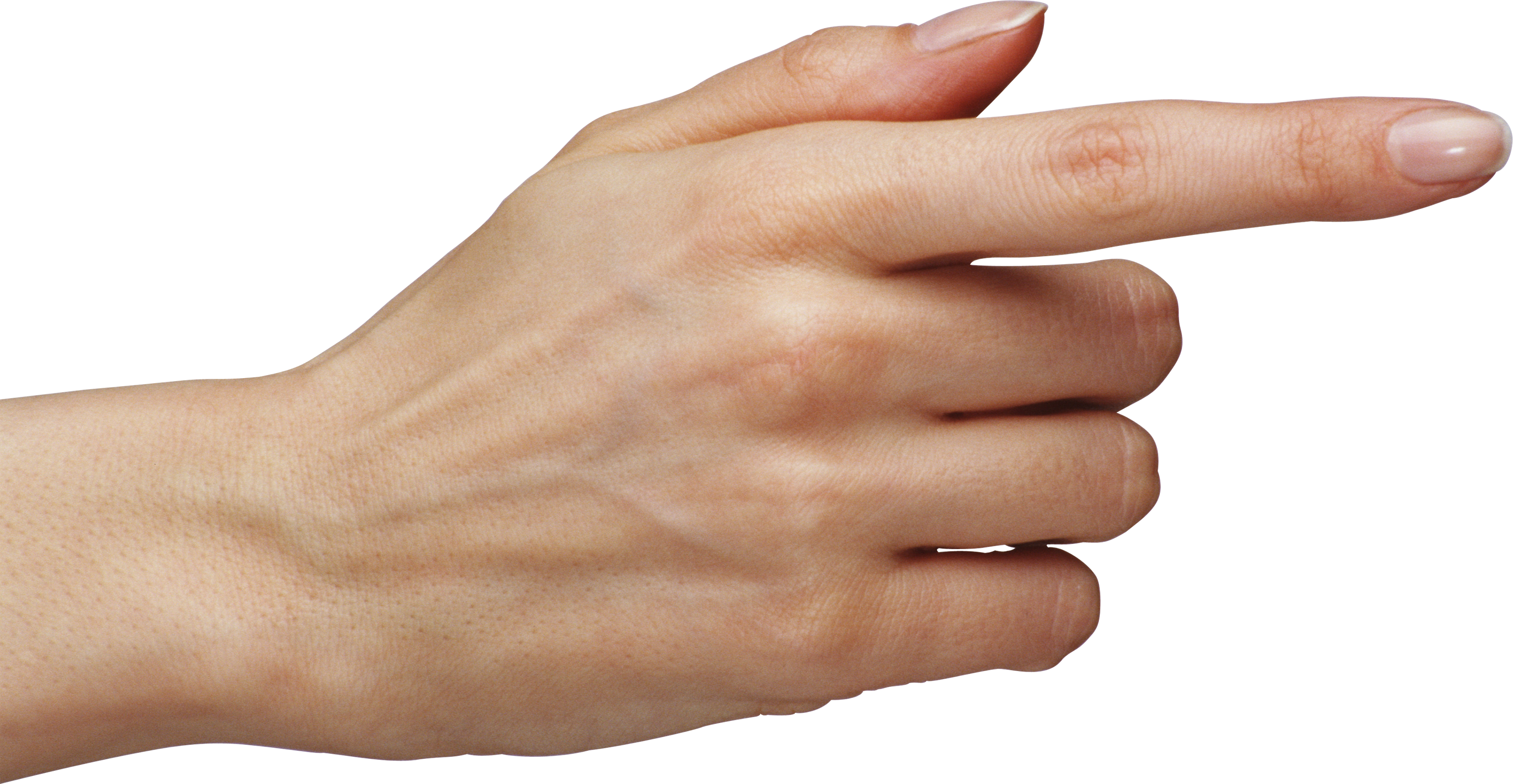 Finger png image cut. Skin clipart skin anatomy