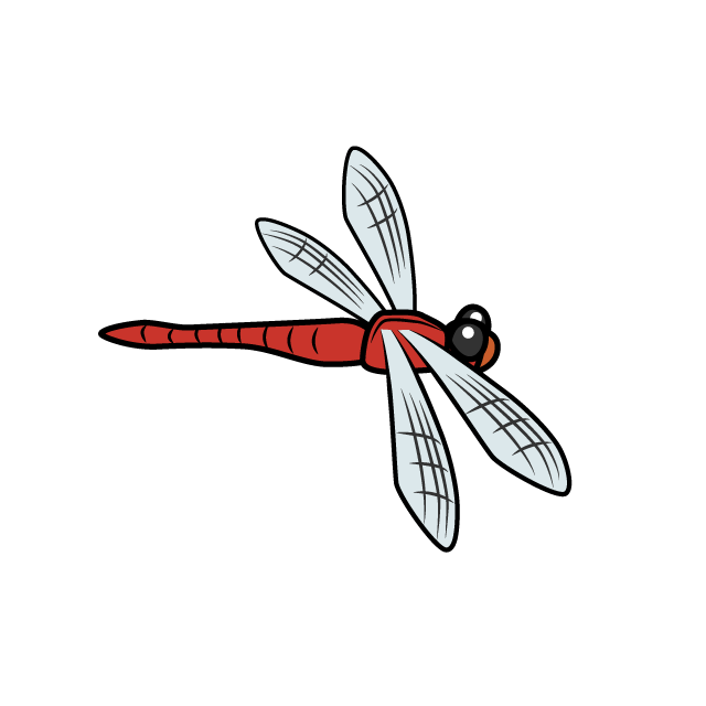 Free dragonflies clip art. Dragonfly clipart firefly