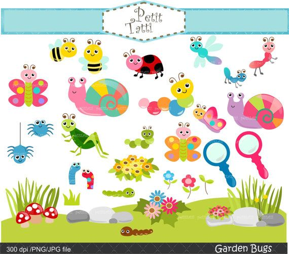 Insects clipart garden insect. Bugs clip art cute