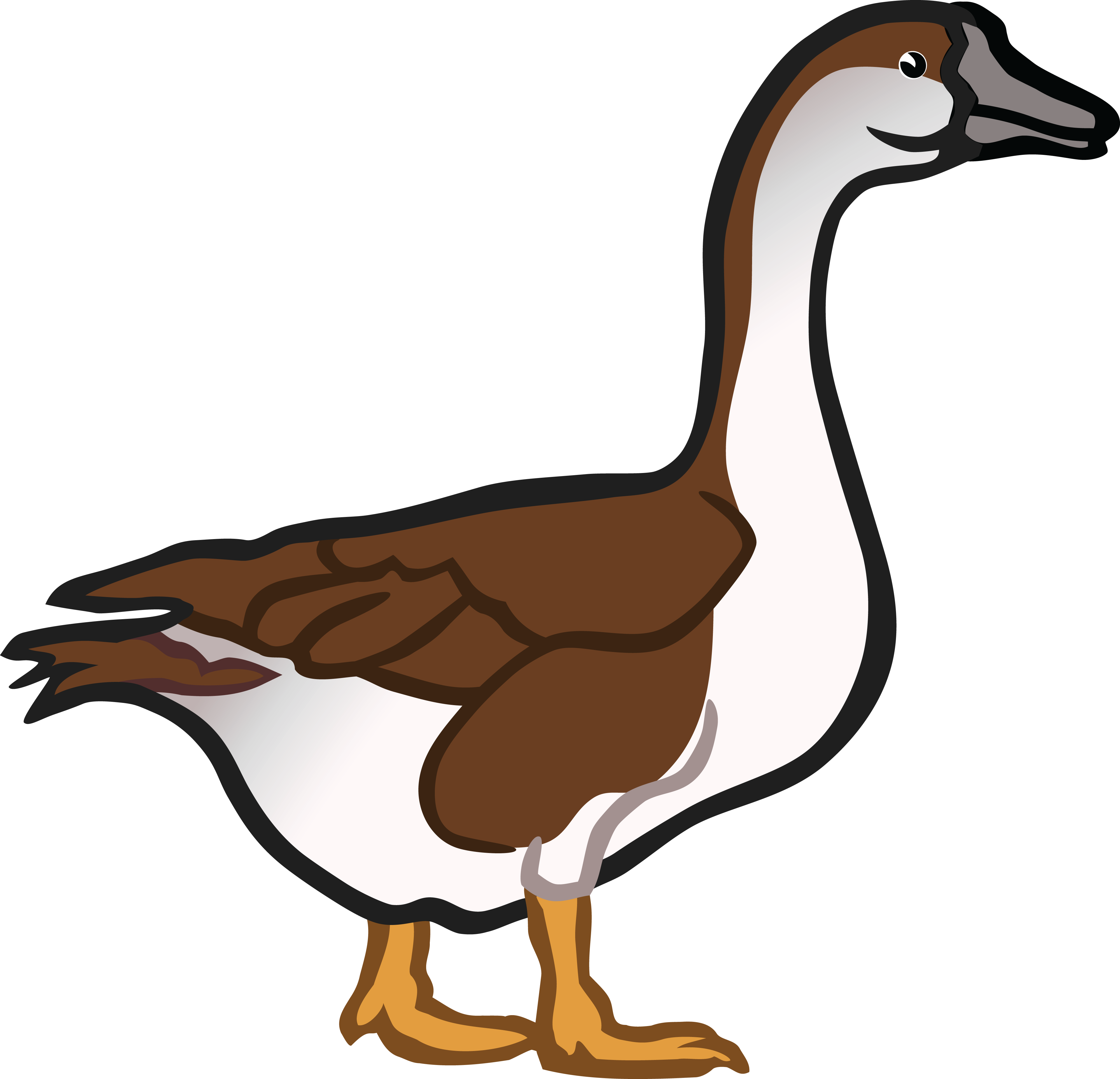 Goose clipart marsh.  collection of png