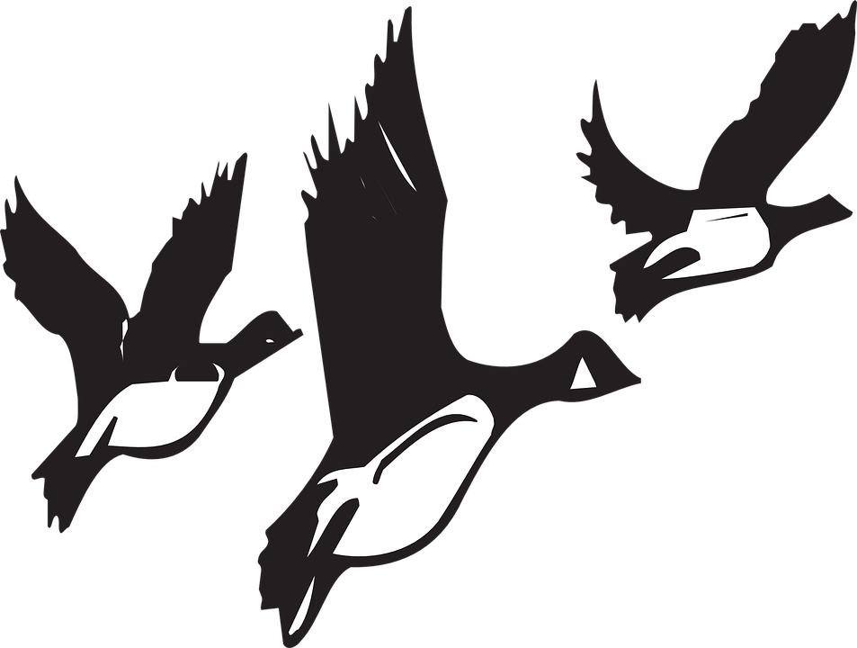 Illustration free on dumielauxepices. Cute clipart goose
