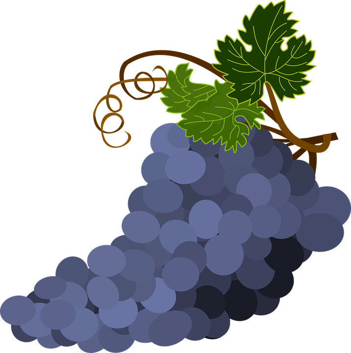 Bunch of png winogrona. Grapes clipart happy