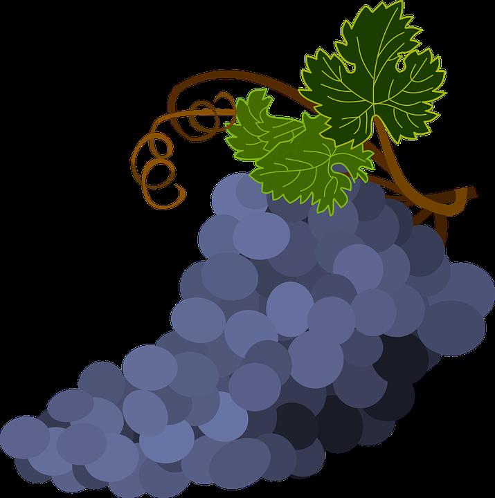 Grapes happy