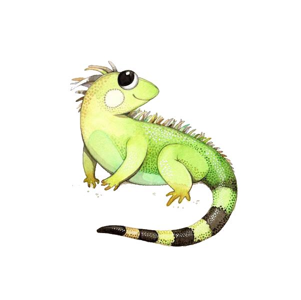 Green drawing illustration cute. Lizard clipart iguana