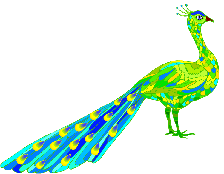 Pictures at getdrawings com. Design clipart peacock