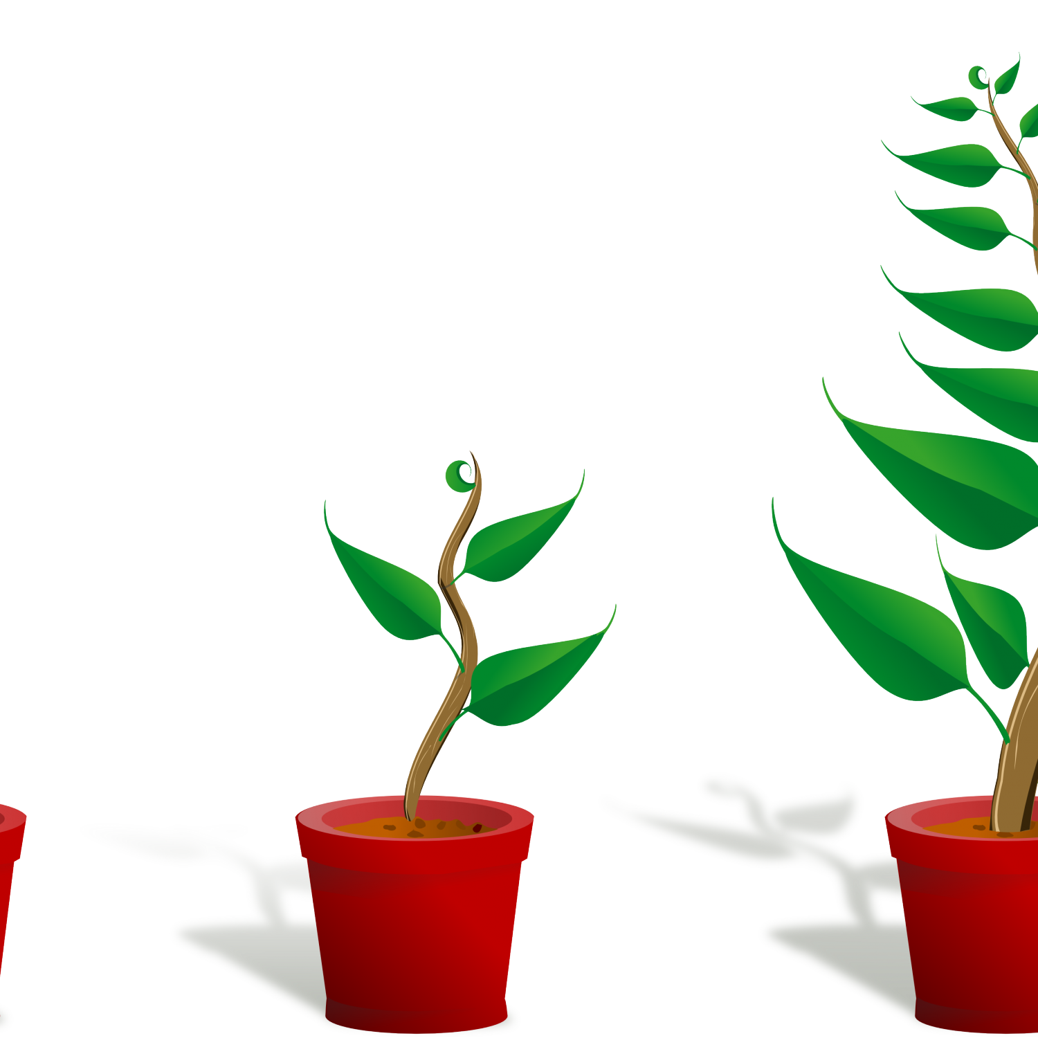Flower growing pxpng cute. Plant clipart potted plant