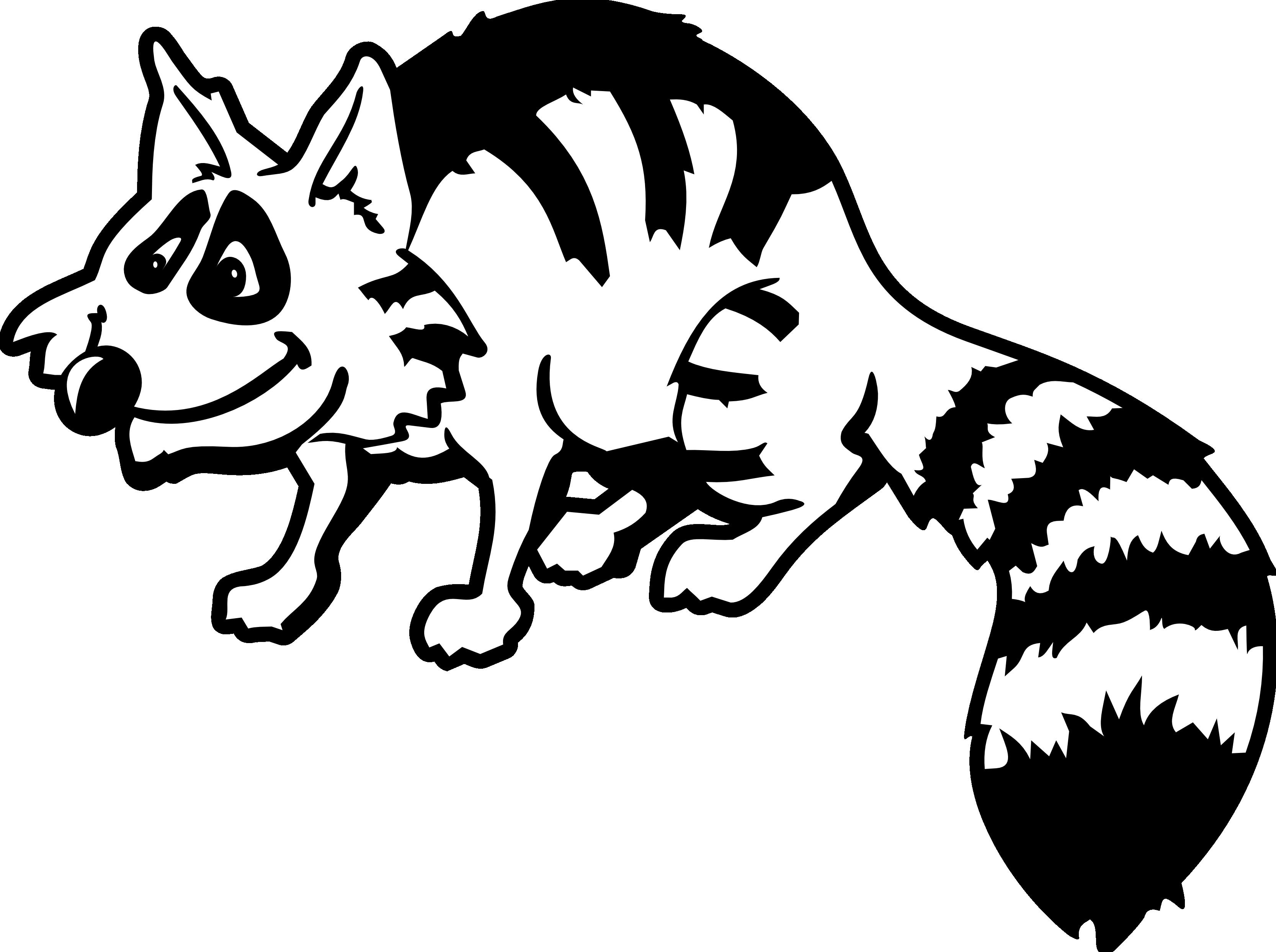 Raccoon panda free images. Racoon clipart skunk