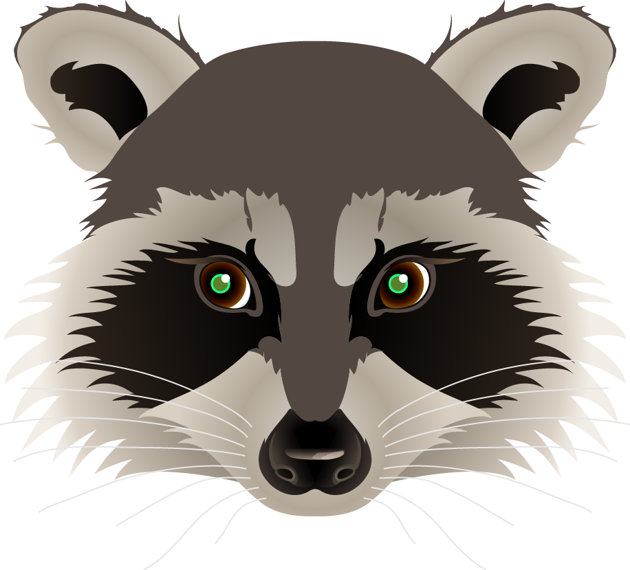 Raccoon face drawing at. Racoon clipart woodland