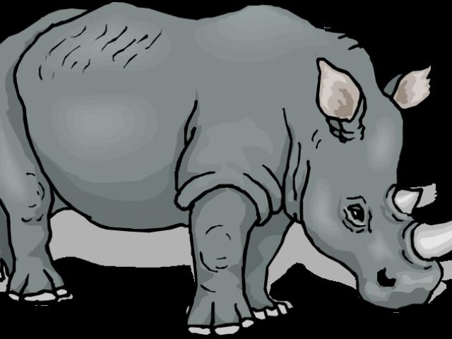 jungle clipart rhino