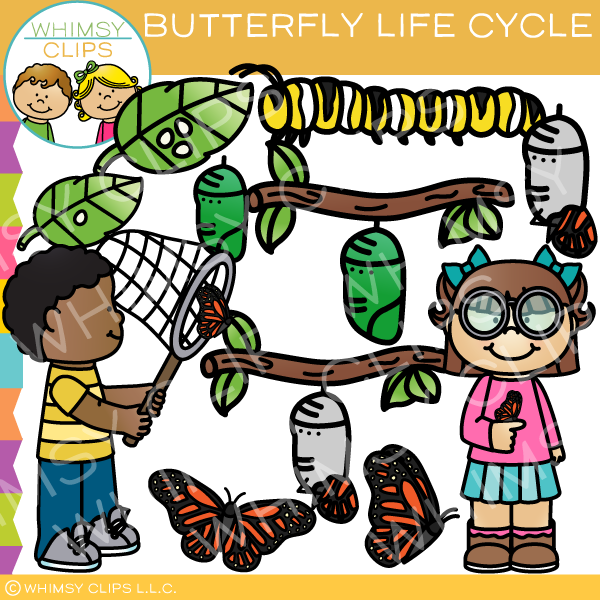 Life clip art . Cycle clipart butterfly