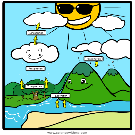 Cycle clipart rain cycle. Transpiration definition water ionizer