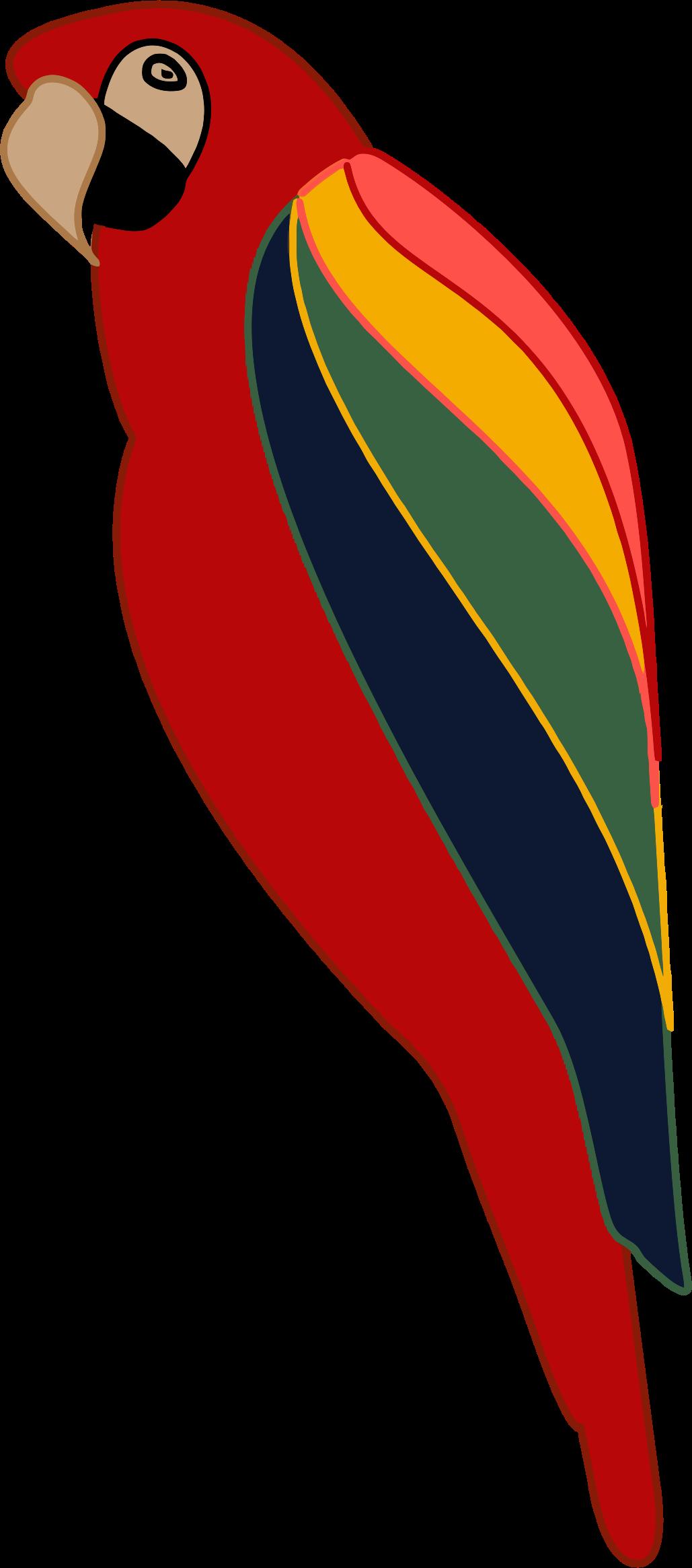 D20 clipart stylized. Parrot