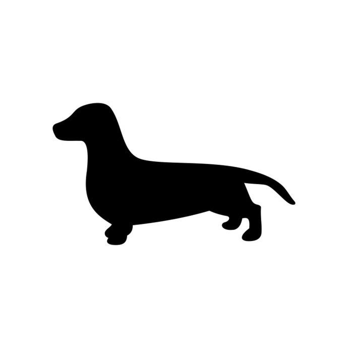 Dachshund clipart. Dog graphics design svg