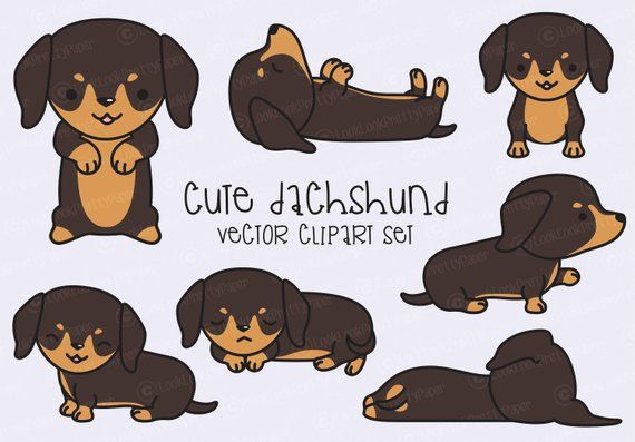Premium vector kawaii cute. Dachshund clipart animated