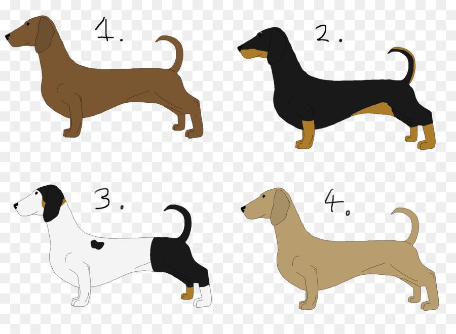 Dog breed hound clip. Dachshund clipart dachshund puppy