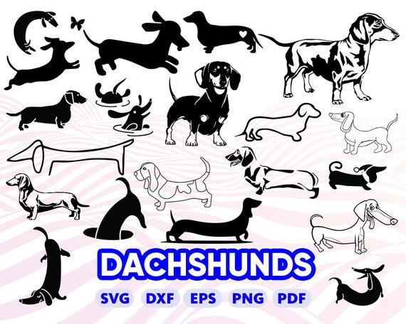 Dachshund clipart svg. Doxie wiener dog pet