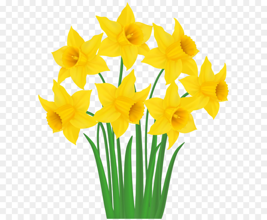 Bouquet clipart daffodils. Daffodil clip art yellow