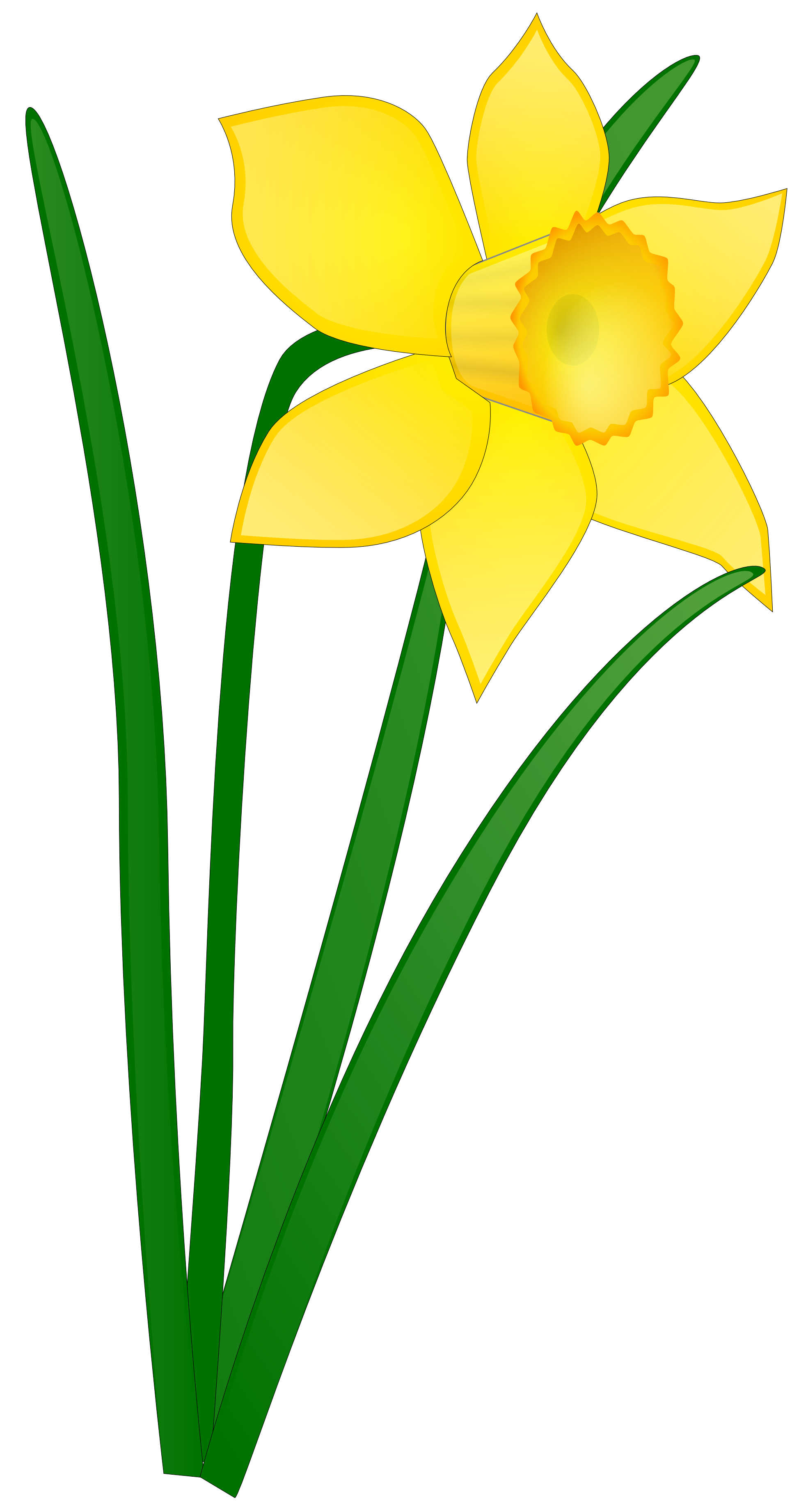 Daffodil clip art panda. Outside clipart field flower