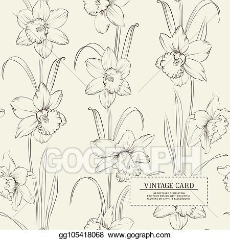 Vector of . Daffodil clipart botanical illustration