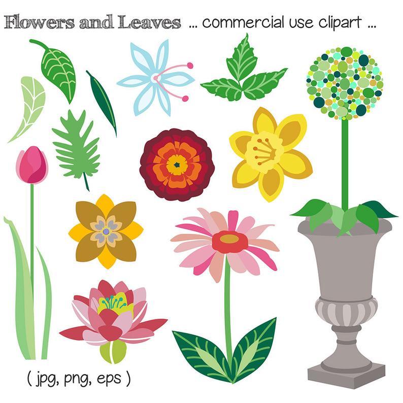 Daffodil clipart daisy plant. Flower clip art waterlily