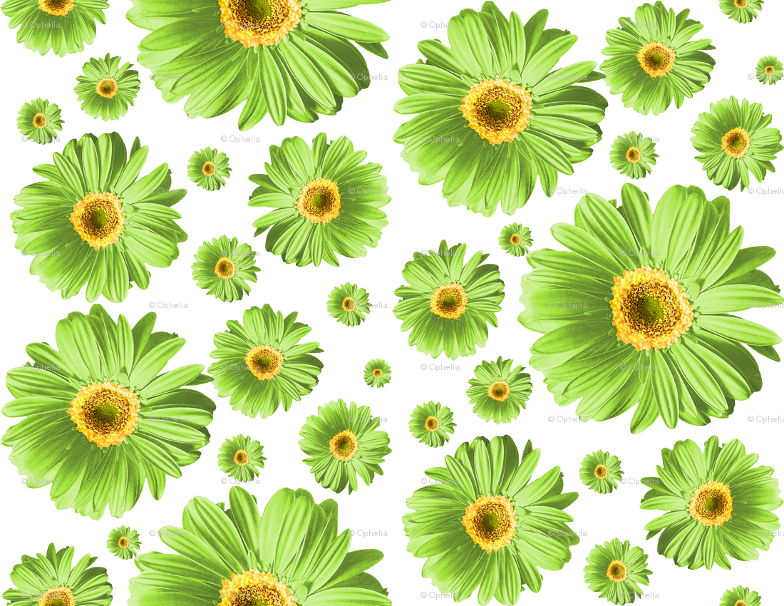 Green daisies fabric ophelia. Daffodil clipart daisy plant