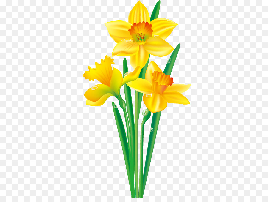 Free flower yellow download. Daffodil clipart easter