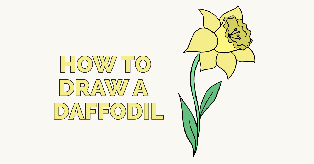How to a really. Daffodil clipart easy draw
