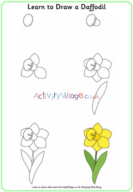 Daffodil clipart easy draw. Learn to a