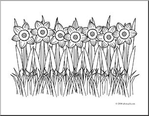 Daffodil clipart field daffodil. Clip art coloring page
