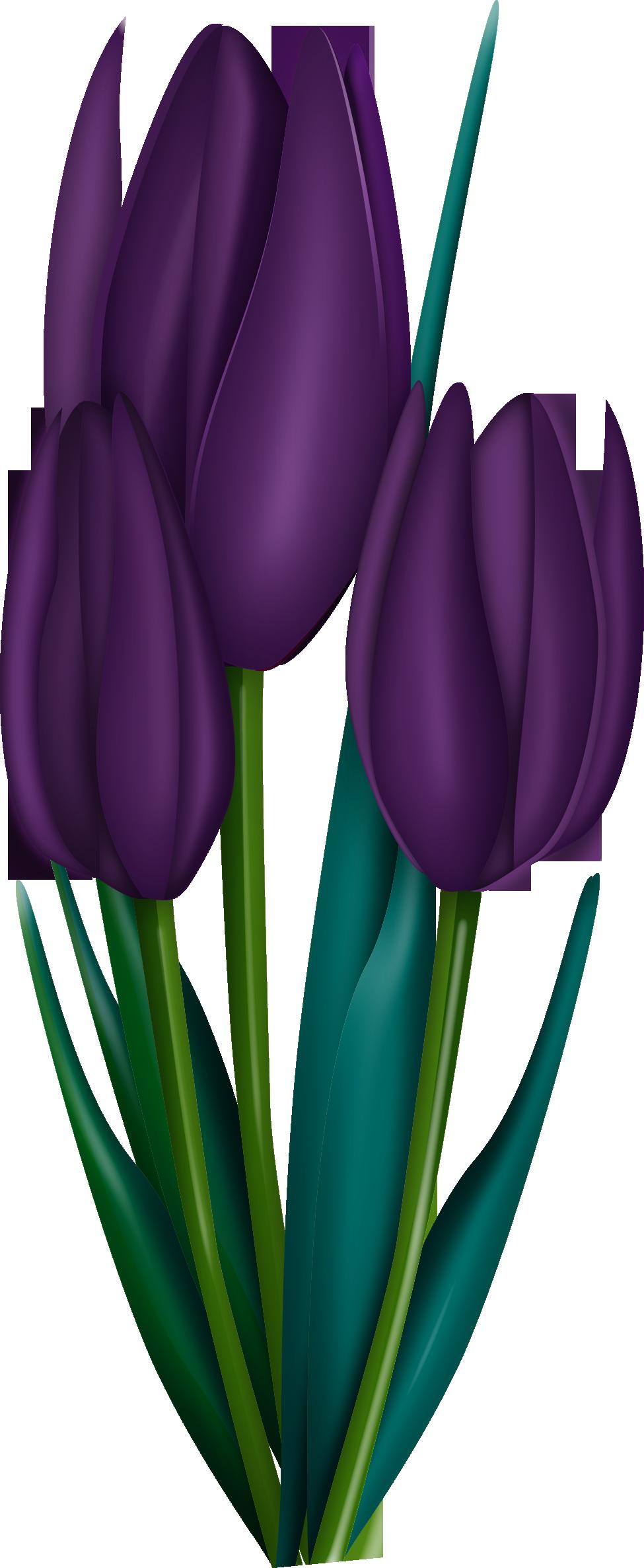 e cdbddc orig. Poppy clipart solid flower