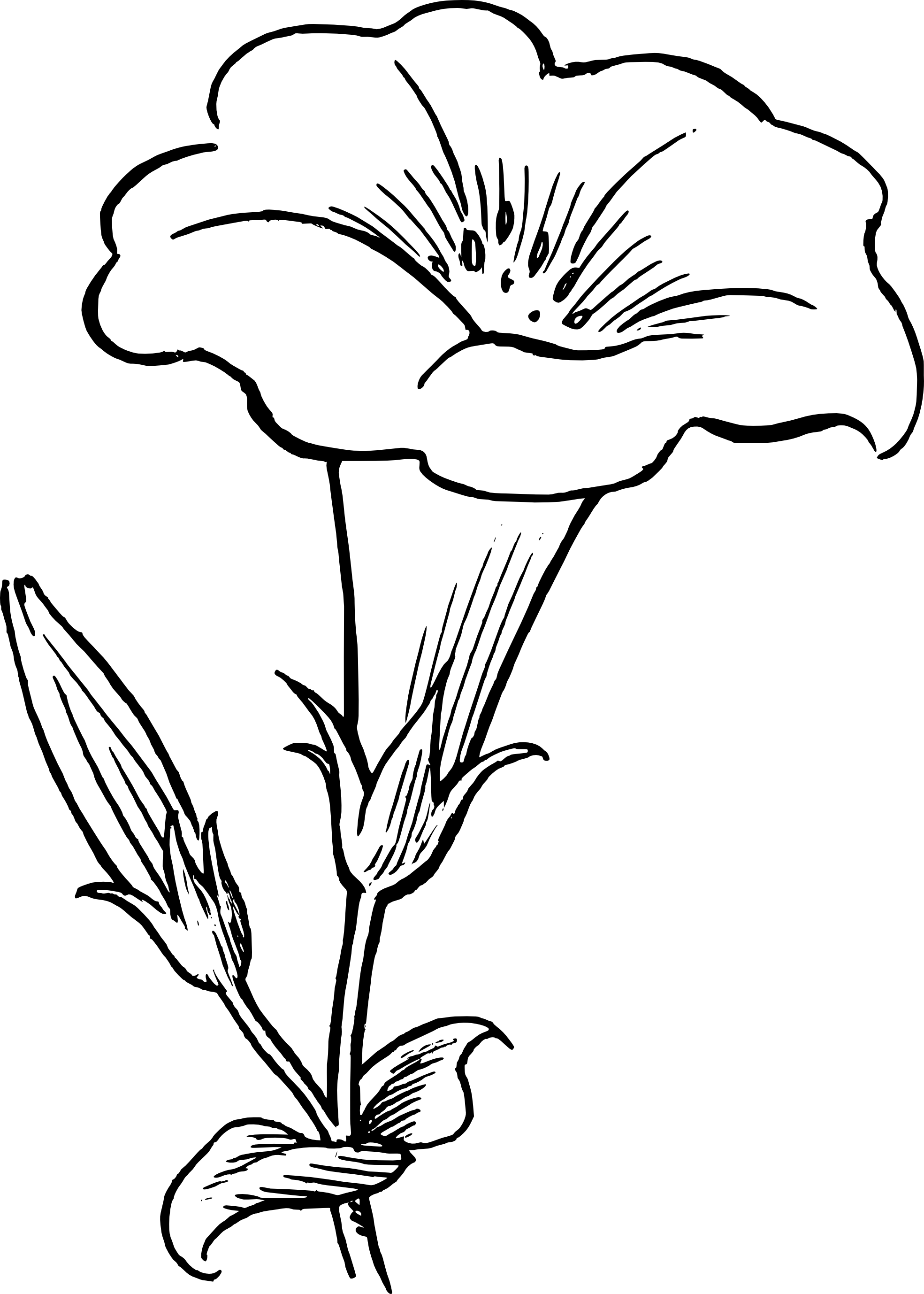 Flower black and white png.  collection of yellow