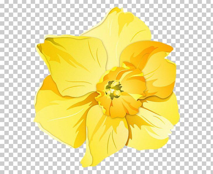 Pin badges t shirt. Daffodil clipart trumpet flower