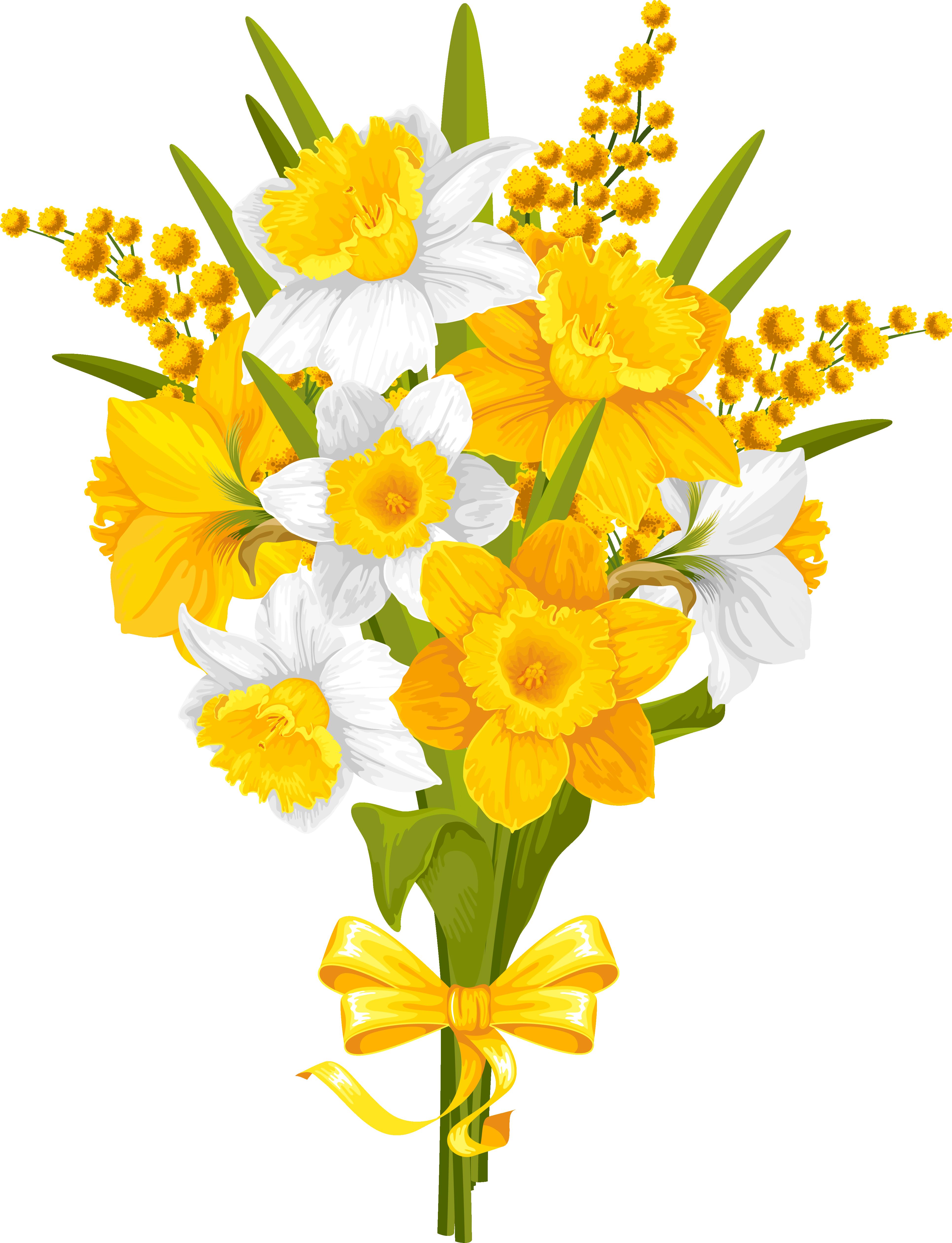 Daffodil clipart tulip. Flower clip art transprent
