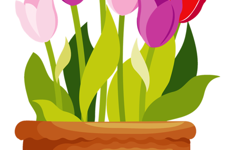 Garden clip art free. Daffodil clipart tulip